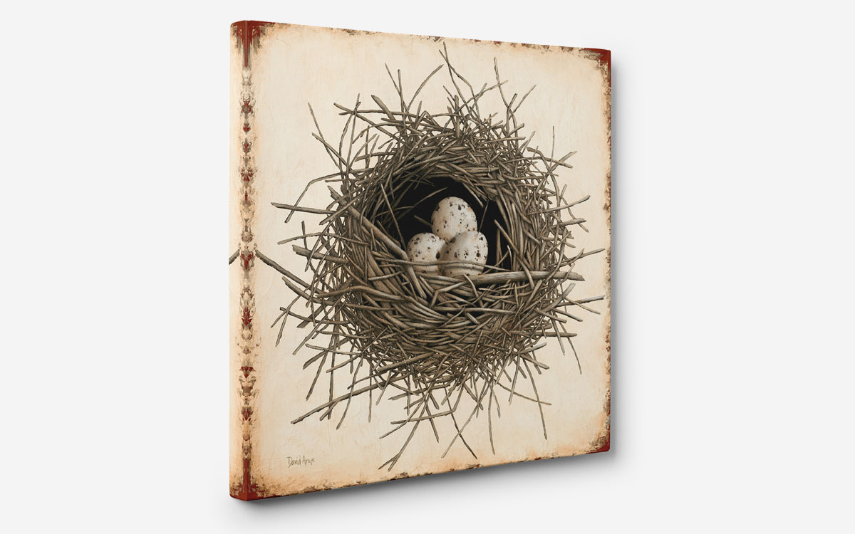 hope-nest-angled-giclee-product-gallery-image
