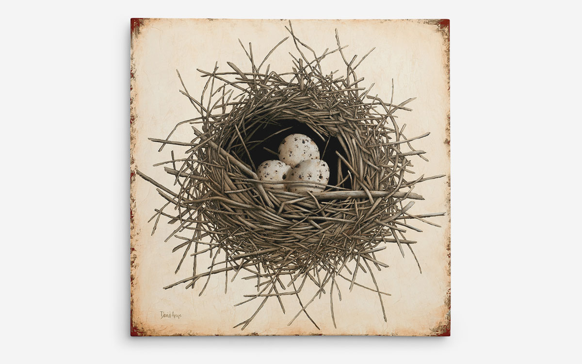 hope-nest-giclee-product-gallery-image