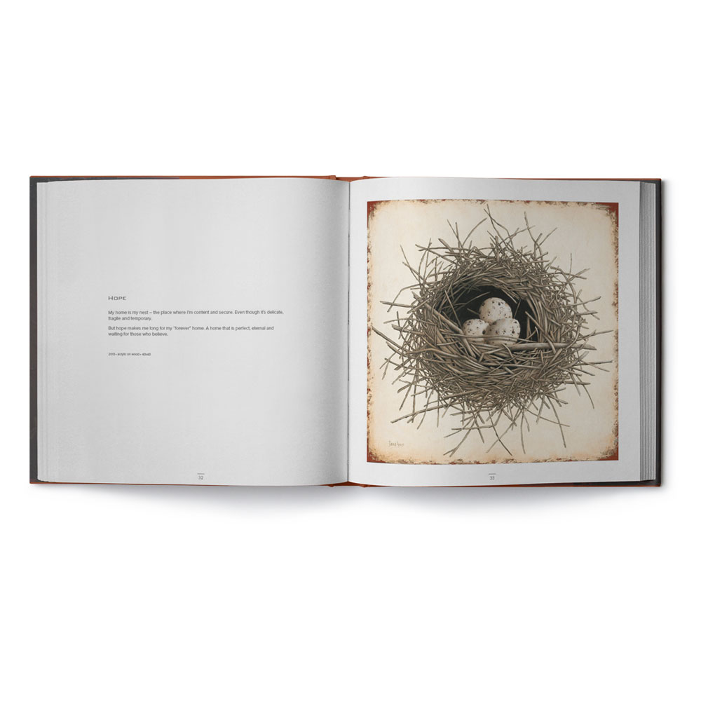 book-david-arms-product-image-open hope nest