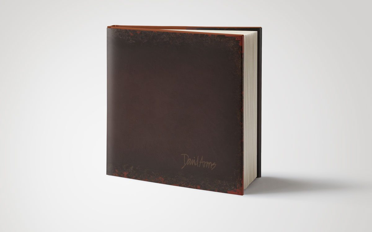 book-david-arms-dust-jacket-cover-standing