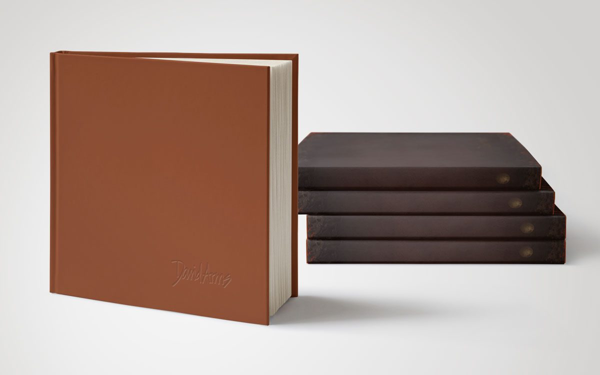 book-david-arms-hardcover-stacked