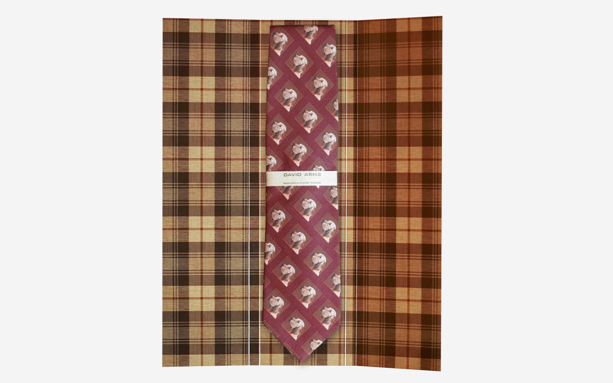 dog-necktie-burgandy-in-box-product-gallery-image