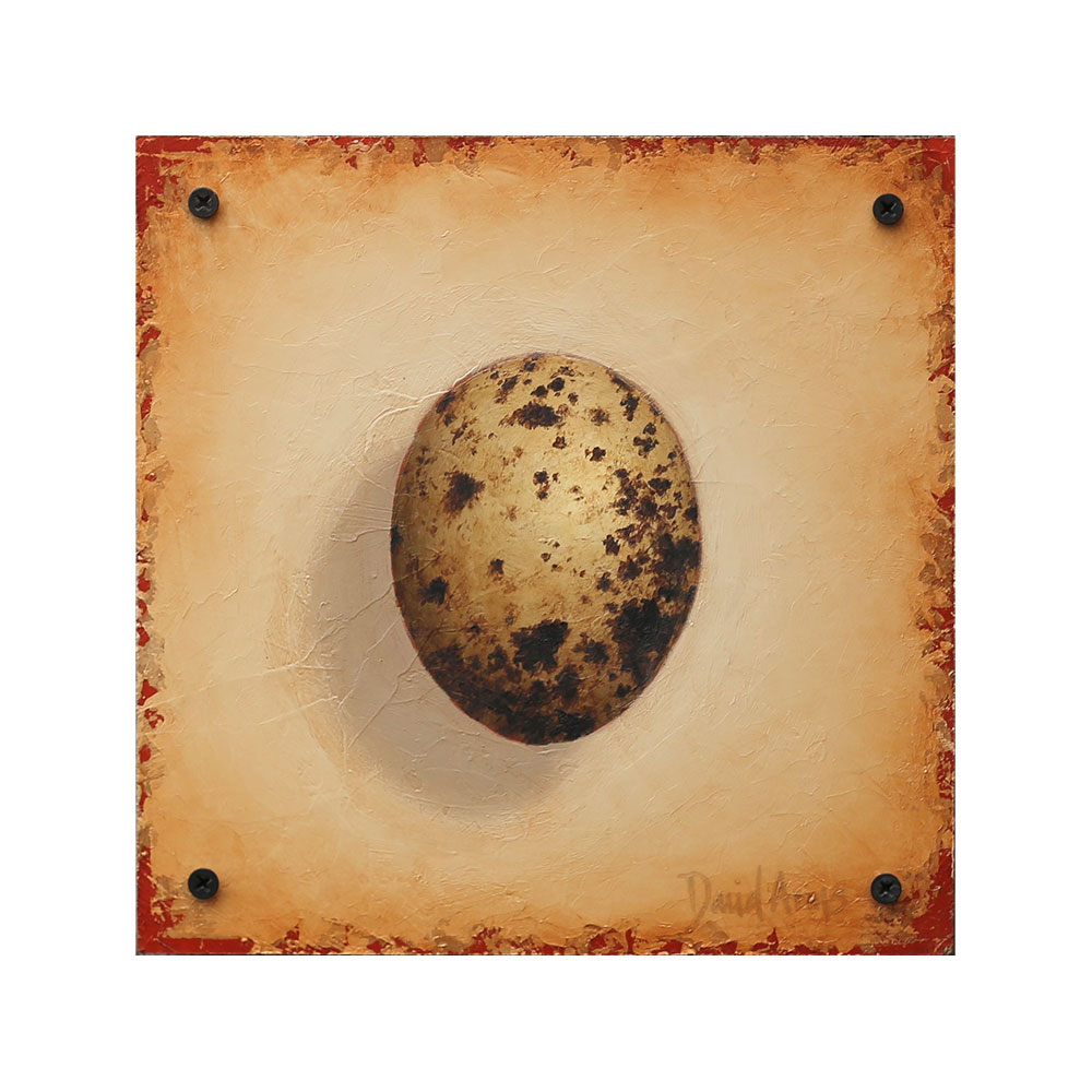 Hope – Hawk Egg • 8.5×8.5