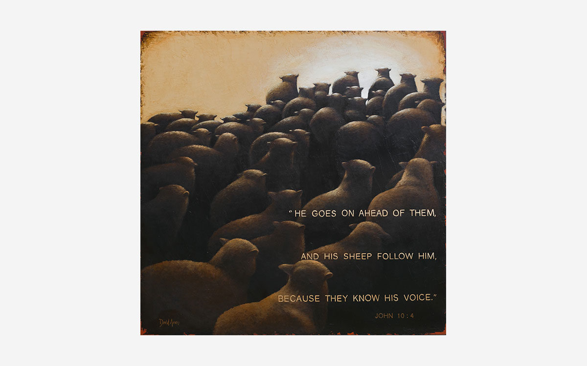 the-good-shepherd-43x43-artwork-product-gallery-image