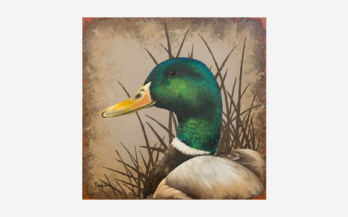 mallard-20x20-artwork-product-gallery-image