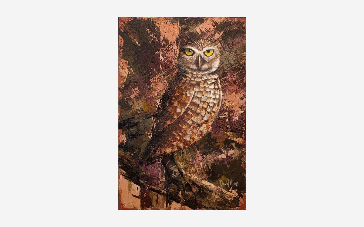 owl-11x17-artwork-product-gallery-image