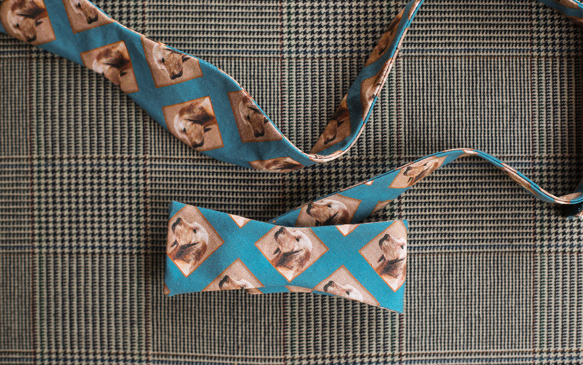 dog-bow-tie-blue-folded-product-gallery-image-02