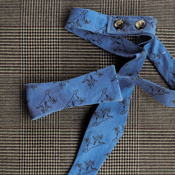 setter-bowtie-blue-product-image-hover