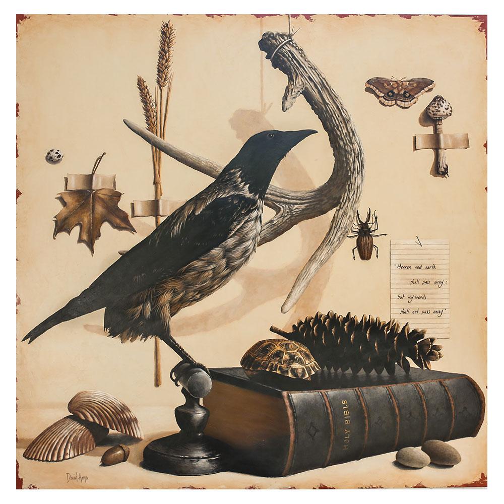 Cabinet Of Curiosities • 48×48