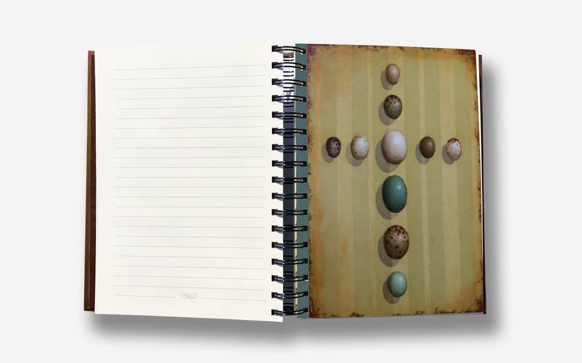 crosses-journal-product-gallery-image-cross-eggs