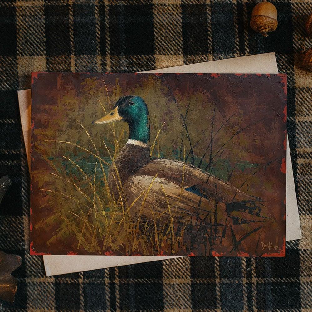 mallard-notecard-product-image-hover