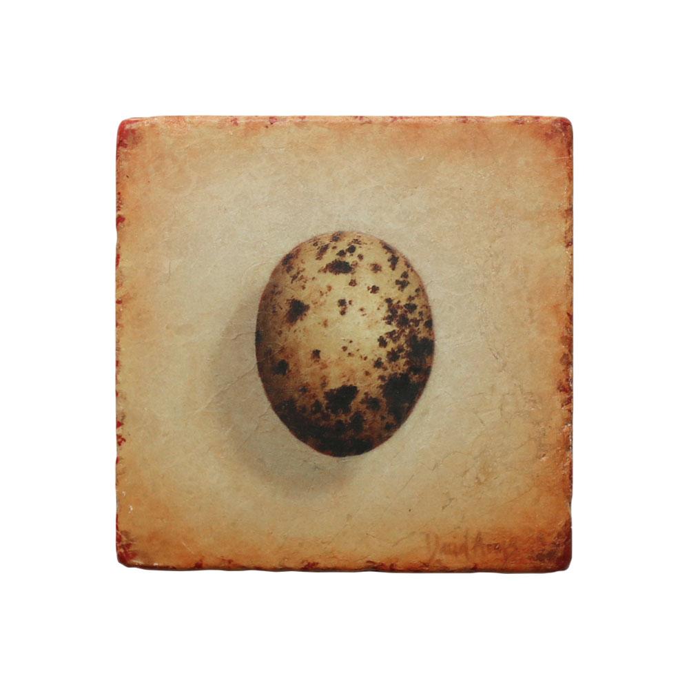"""Hope"" (Hawk Egg) Marble Coaster"