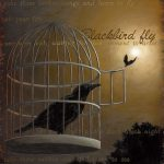 Blackbird Fly • 25×31