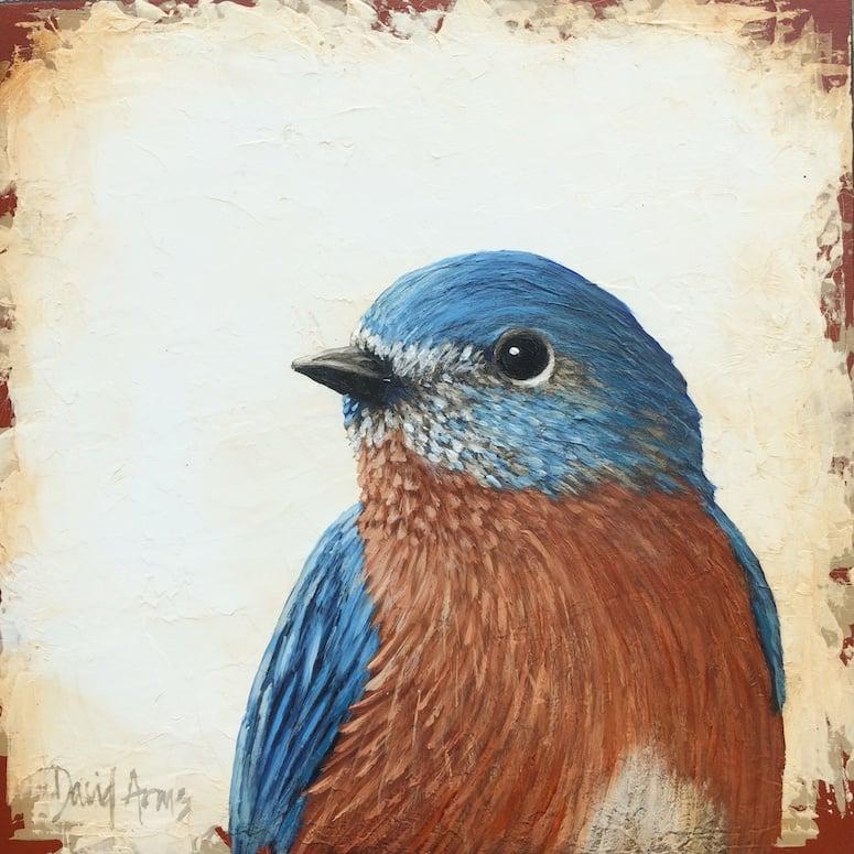 Bluebird • 7x7