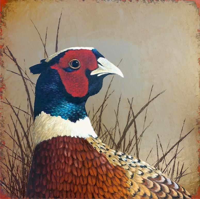 Pheasant • 16x16